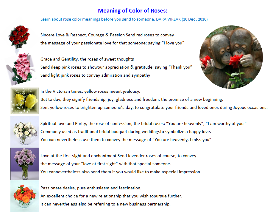 Numerology 7, number and meaning of roses